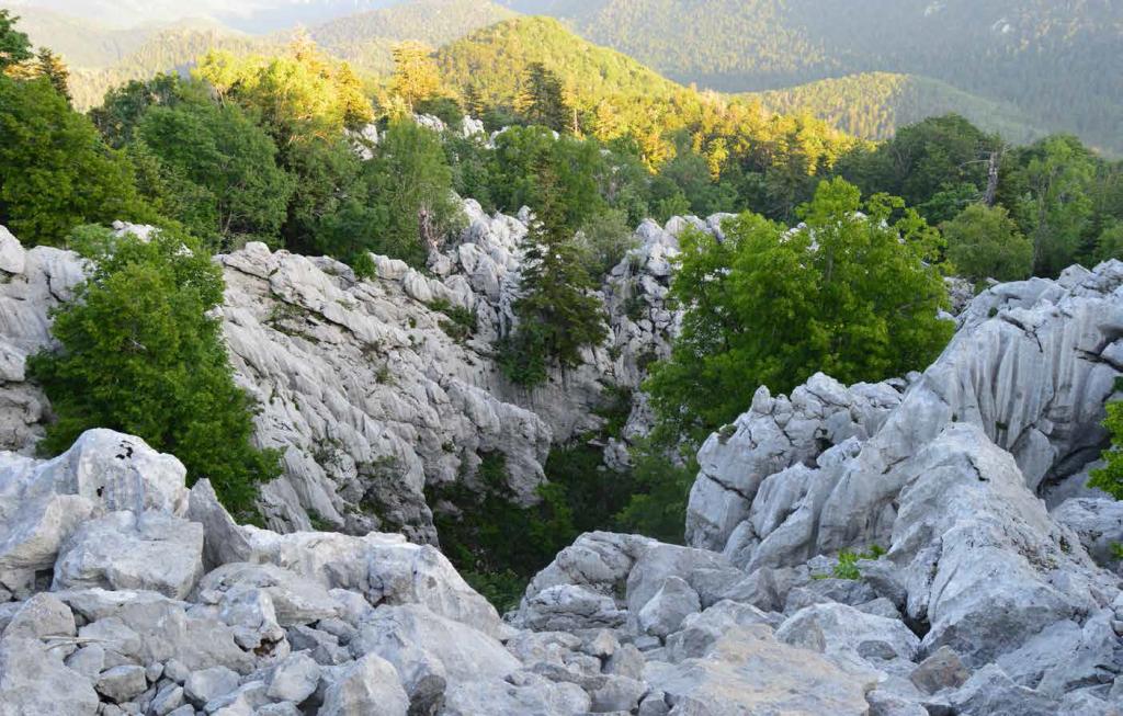 Bijele stijene (foto: Nikola Pletikosić)